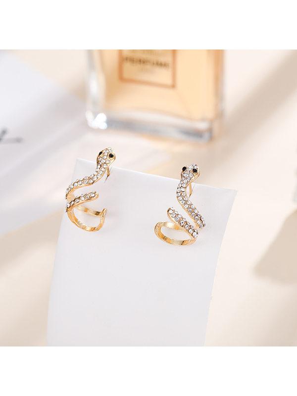Snake-shaped earrings net celebrity street shooting simple e